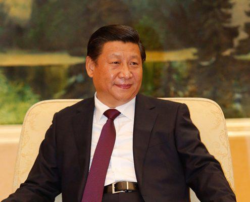 Xi Jinping, photo by Michael Temer
