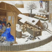 Medieval serfdom