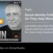 Racial Politics: Do they Help Minorities?