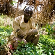 Developing world struggles to transition from farming to manufacturing